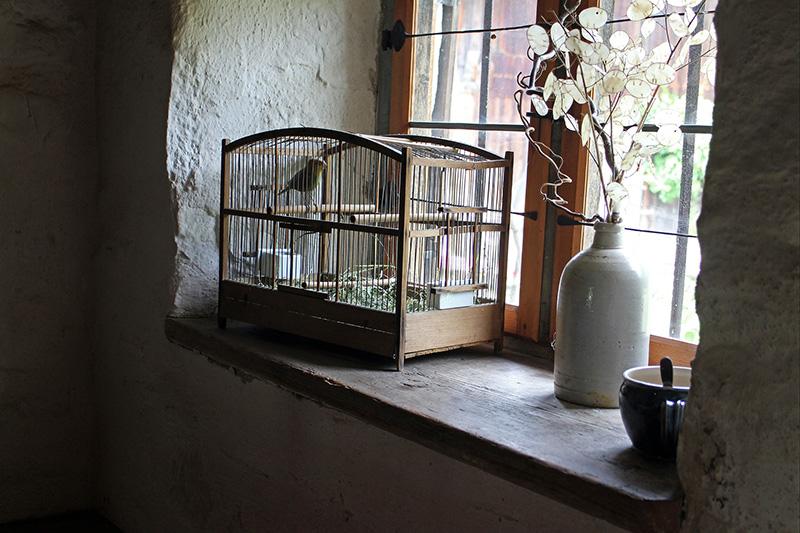 birdcage001