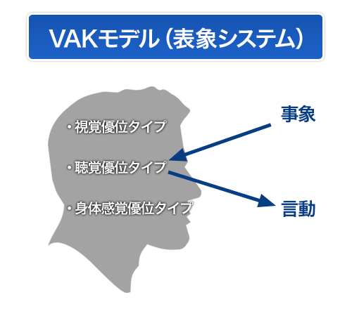 vak_model001